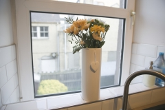 Flowers in Kitchen Window